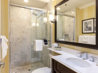 Stand-up shower and single vanity sink in Junior Suite Guest Room
