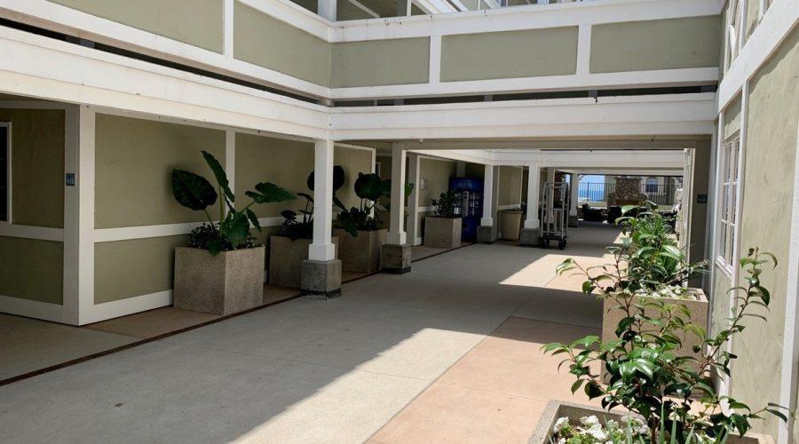 Construction Update – Courtyard is open!